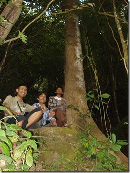 Hutan Gunung Lima