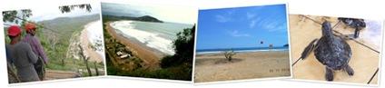 View Pantai Taman